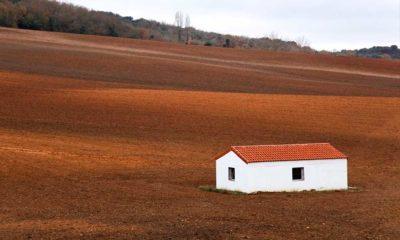 Terreno agrícola en una zona rural de España (Imagen de Martín Montiel)